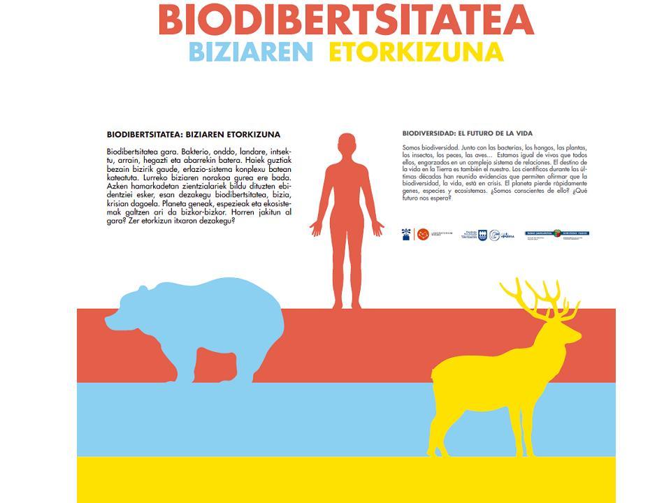 biodibertsitatea.jpg
