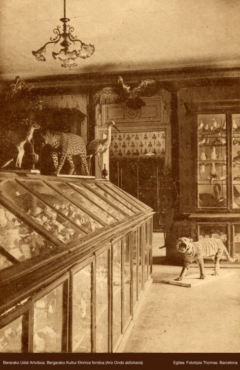 Ancient photograph of the Cabinet of Sciences at the Royal Seminary in Bergara